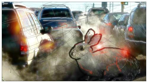 smog città 2