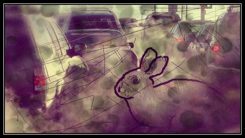 smog città 4