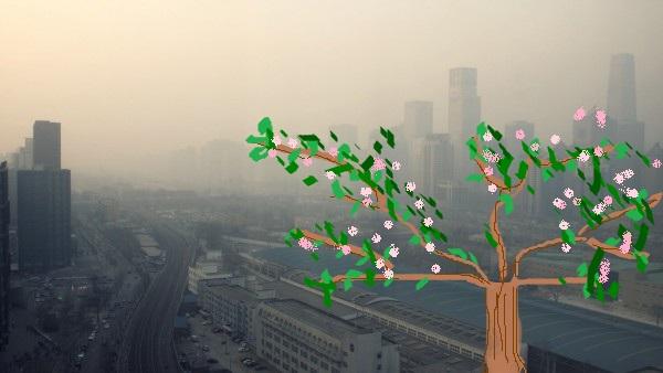 smog fiori