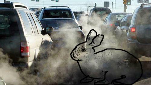 smog_automobili