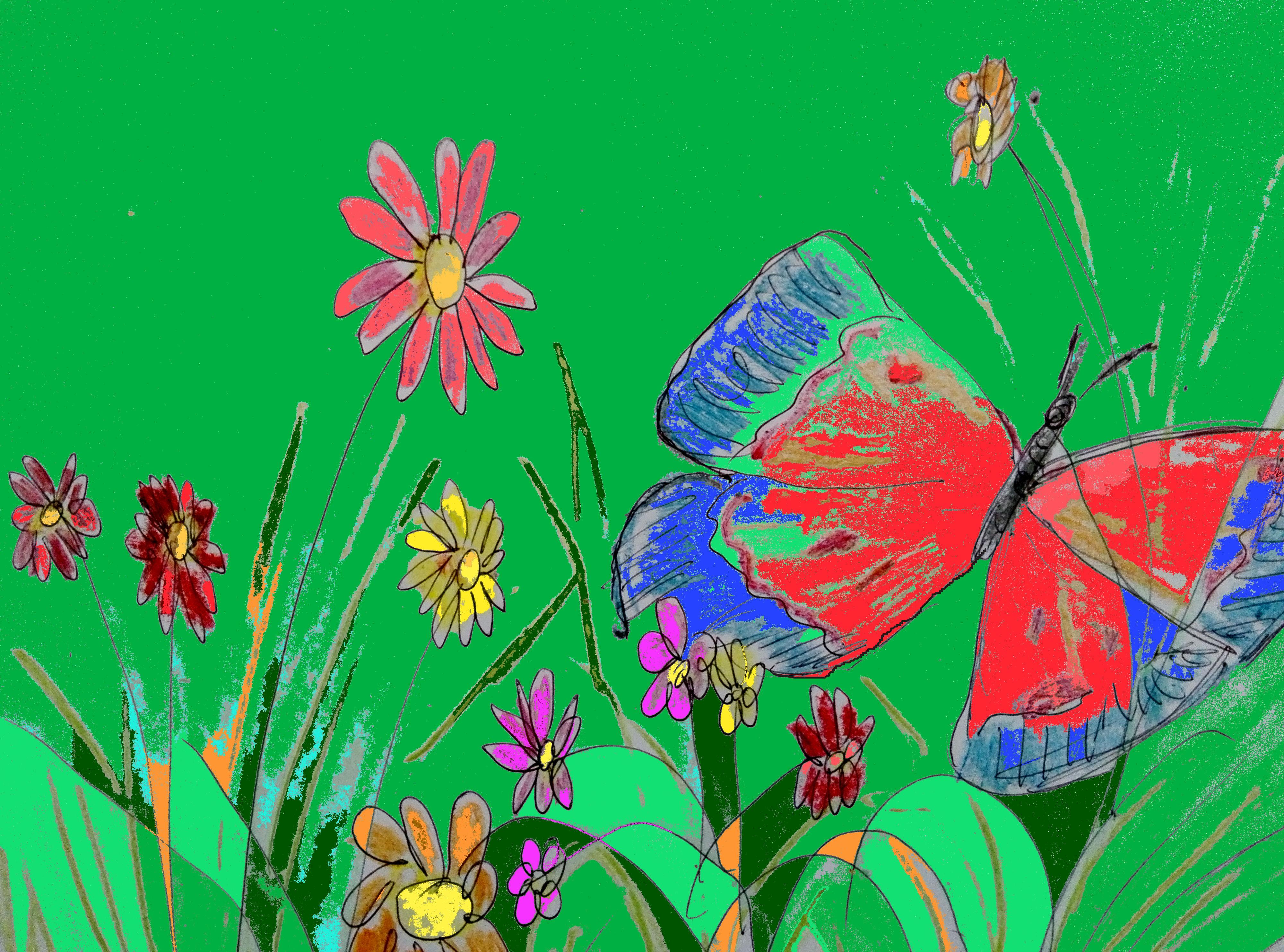 bellezza colori roberto travaglini